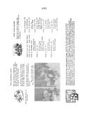Página 2172