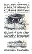 Página 734