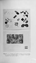 Página 433