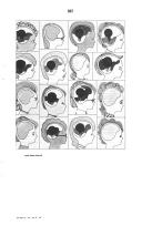 Página 587