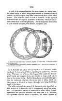 Página 1118