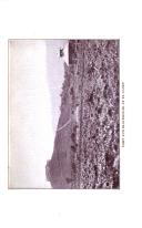 Página 5994