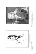 Página 632