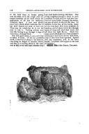 Página 228