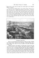 Página 937